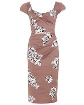 Stop Staring! IDDAD-03 Dress Taupe & Rose £199.00