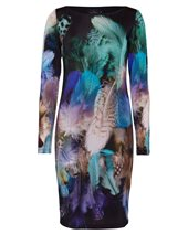Ariana Colour Feather Dress Feather Print £89.00 (was £119.00)